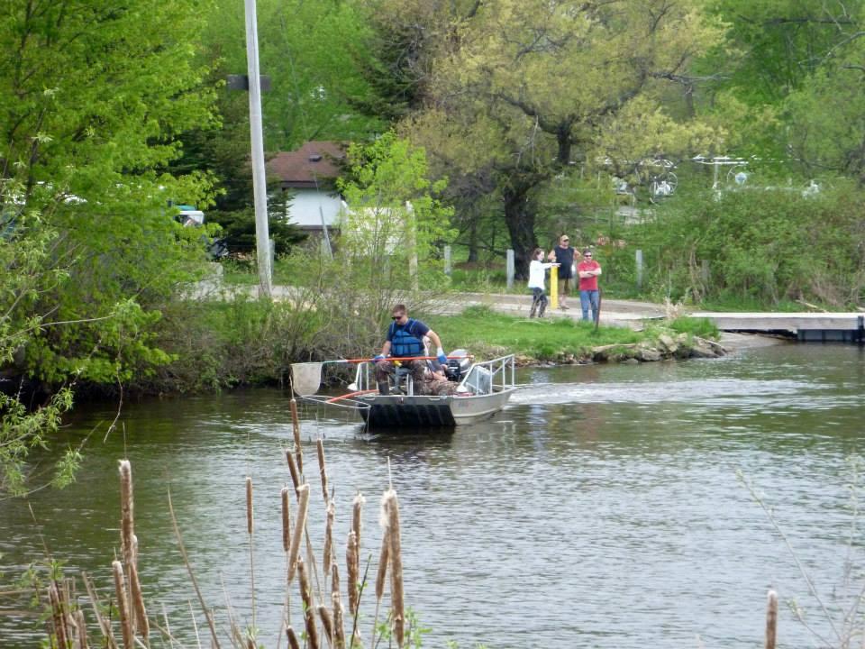 Fish shocking seminar at whalen grade lake wisconsin for Lake wisconsin fishing