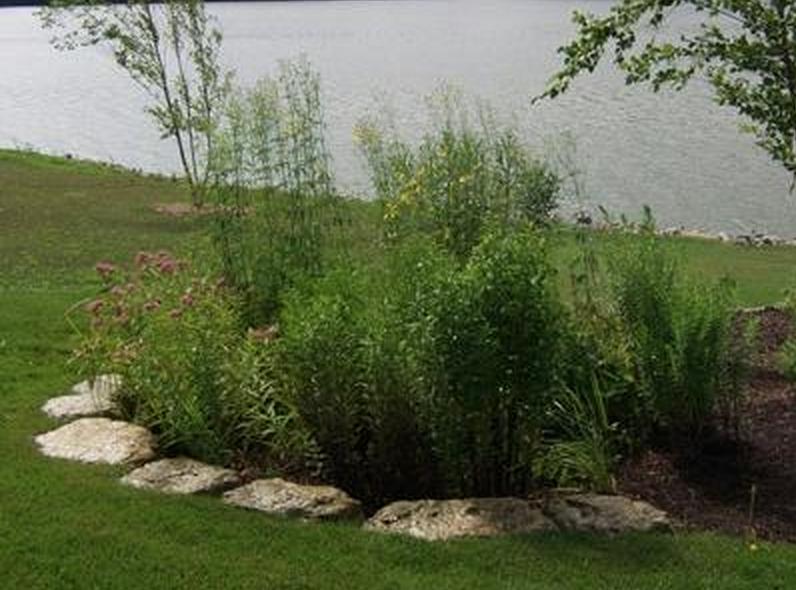 Rain Garden - http://www.kittlesonlandscape.com/stone-landscaping/landscape-water-features